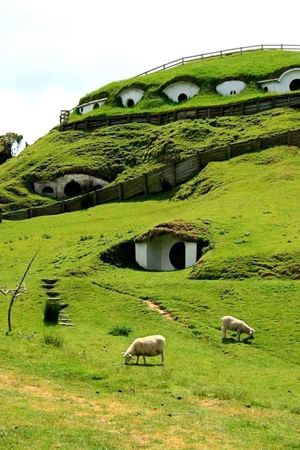 New Zealand. Hobbit holes
