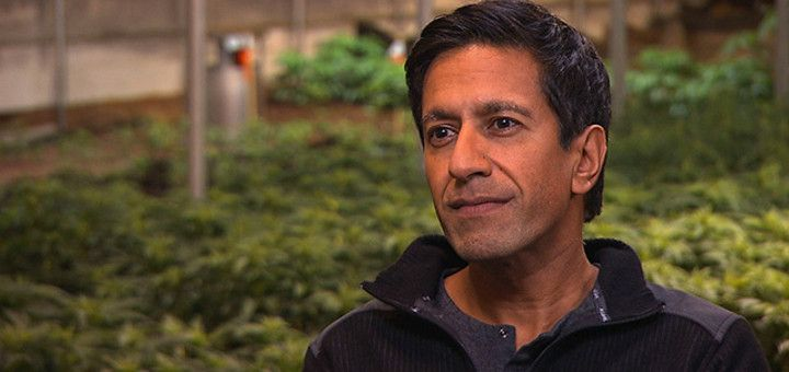 Dr. Sanjay Gupta Talks Marijuana Use, Vaporizers vs. Edibles, and More |  In less than a year, Neurosurgeon Dr. Sanjay Gupta Has Gone From Doubting Medical Marijuana To Discussing How To Best Take It For Its Therapeutic Benefits | See CNN's Video WEED 2 On YouTube