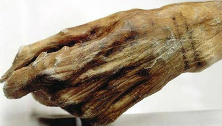 Новое исследование, выполненное с помощью технологий, которые изначально разрабатывались для изучения произведений искусства, выявило новые татуировки на теле 5300-летней ледяной мумии, найденной в горах Австрии.