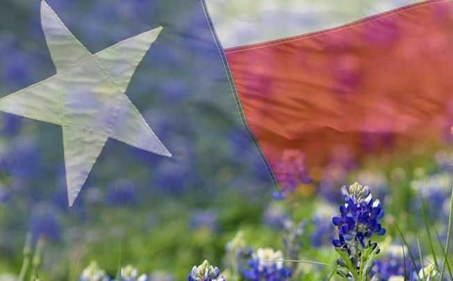 tx flag images