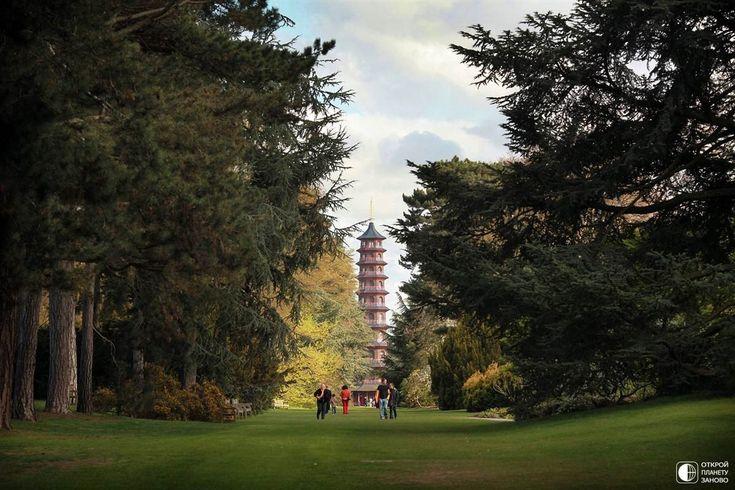 Королевские ботанические сады Кью - Путешествуем вместе