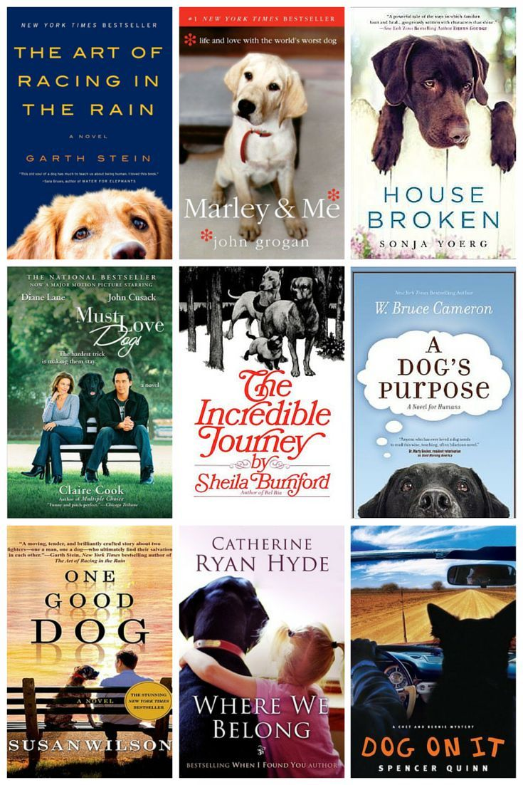 12 Books That Will Make You Love Dogs Even More