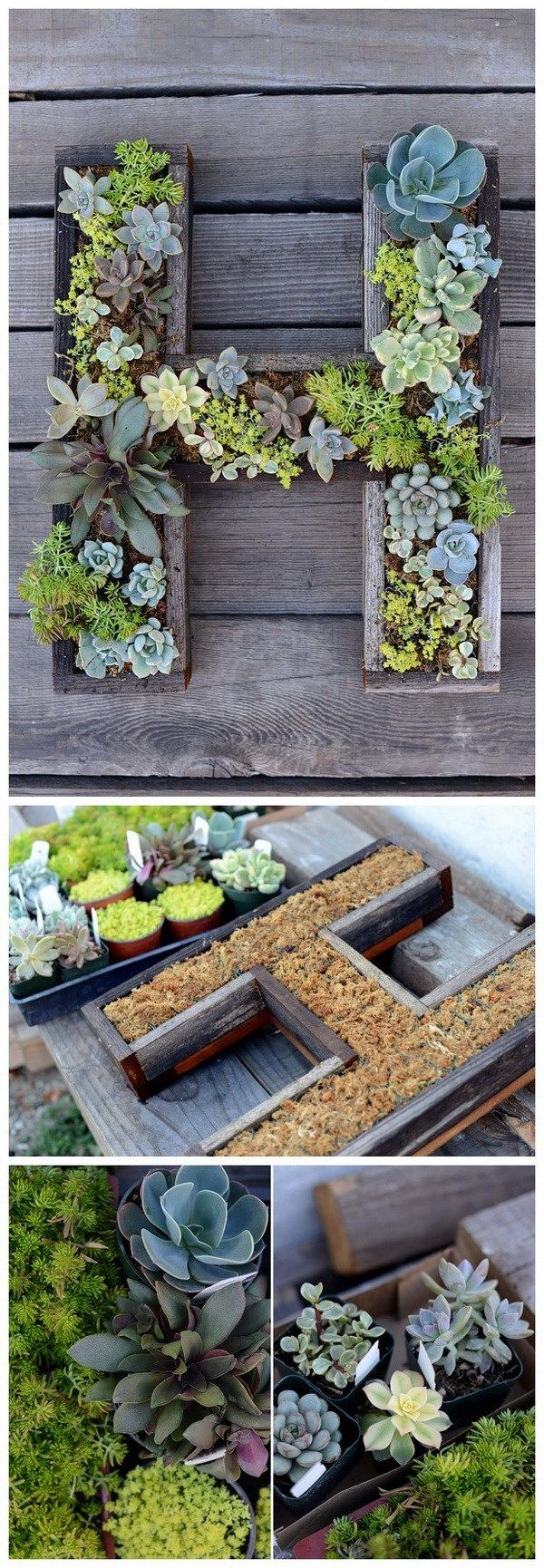 DIY Wall-Mounted Succulent Letter. Make this wall-mounted succulent letter planter and bring in some greenery to your home.