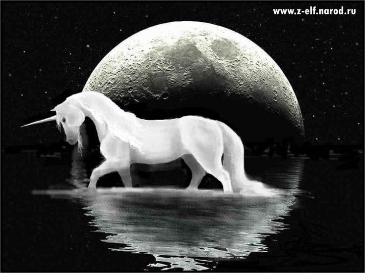 Единорог и Луна