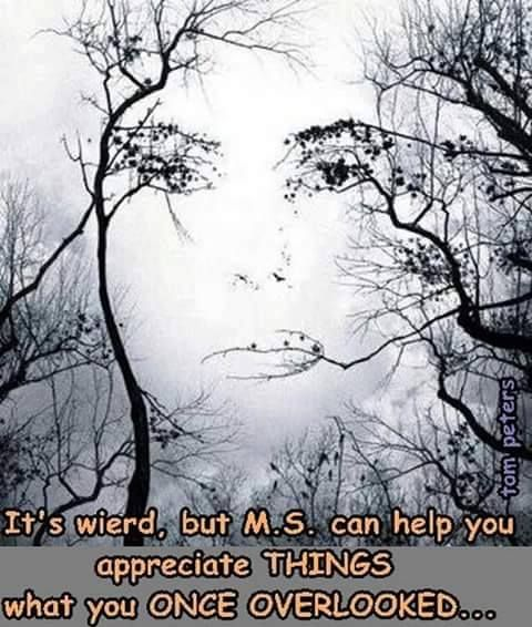 f034866a7ca44094a9a90781ee06c809 2526 best ms memes and humor awareness images on pinterest,Multiple Sclerosis Memes