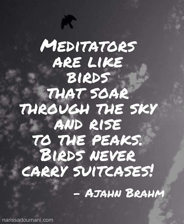 Onwards and upwards. Drop your baggage, it's time to fly! #meditation #AjahnBrahm #Buddhism