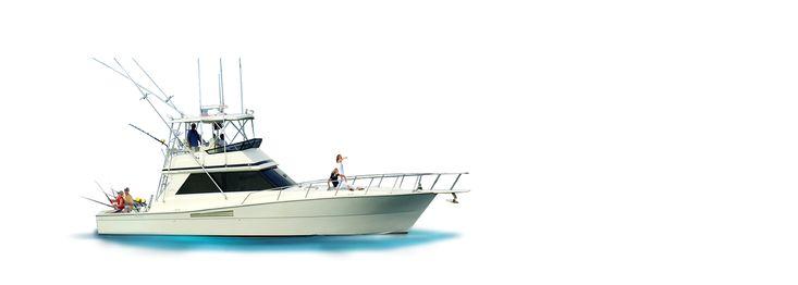 Морские экскурсии на яхте. Прогулки по океану. Аренда яхты в Пунта Кана.