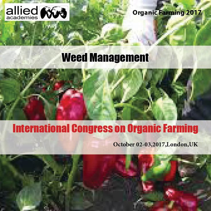 Weed management Various plant species are considered weeds in agronomic editing frameworks. Weeds have numerous ascribes undesirable to harvest makers, not the slightest being the capacity to decrease edit yields through rivalry for assets, for example, daylight, water, supplements, and space. Weeds likewise may harbor creepy crawlies and give a host to certain plant pathogens. Some weed species, for example, wild garlic and eastern dark nightshade, can lessen the nature of the collected…