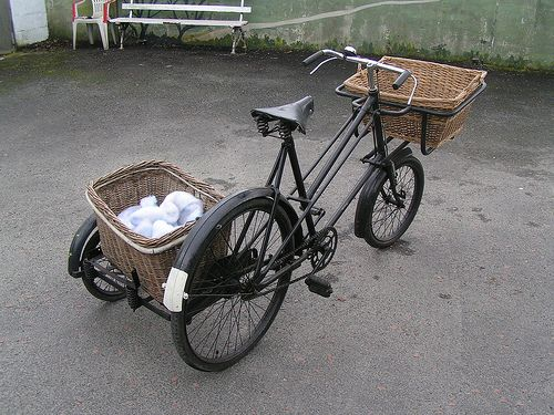pet sidecar | bike riding with small dog? - Pet Forums Community