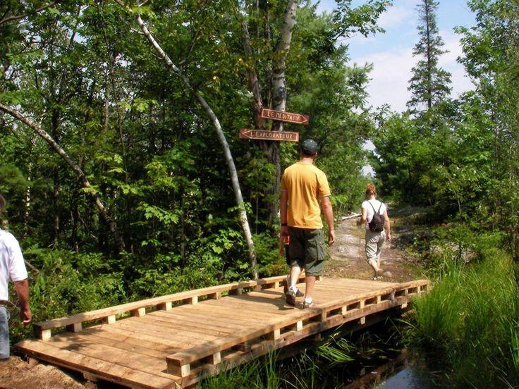 Sur ce site naturel protégé, vous y découvrirez :• Le Belvédère Beauréal et son point d'observation à 218 mètres• Un parcours familial de jeux dans les arbres