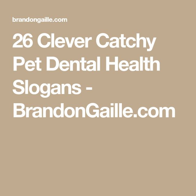 26 Clever Catchy Pet Dental Health Slogans - BrandonGaille.com