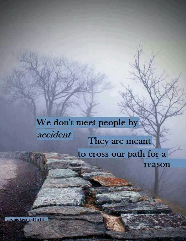 People come into your life for a reason, a season, or a lifetime!