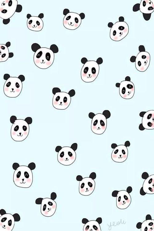 Imagem de panda and wallpaper