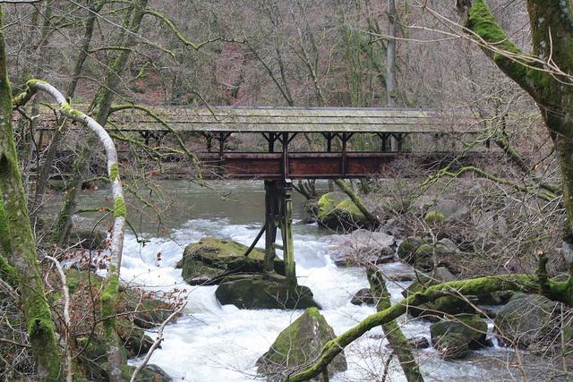 Irreler Wasserfälle - Stromschnellen der Prüm by Daniela 28, via Flickr