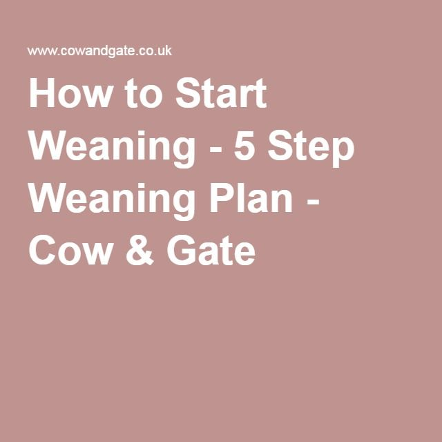 How to Start Weaning - 5 Step Weaning Plan - Cow & Gate