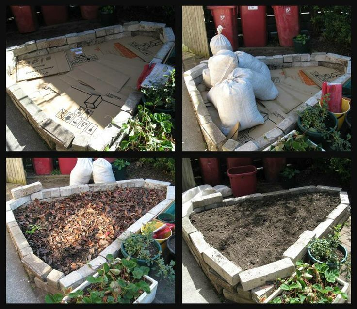 Composting 101 What Is Compost: Best 25+ Mushroom Compost Ideas On Pinterest