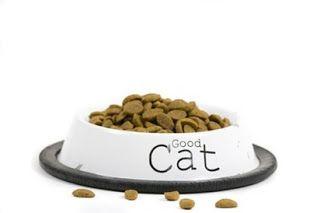 jenis makanan kucing persia yang bagus,anggora,bengal,yang terbaik,royal canin,dan harganya,super premium,harga makanan kucing persia,