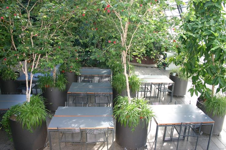 Tropical garden Viikki Helsinki | More than 600 square meters of tropics