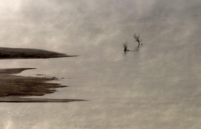 Jirones de niebla - El sol consigue ir deshaciendo la niebla que persiste en el embalse