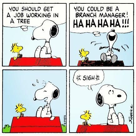 snoopy and woodstock You should get a job working in a tree. You could be a branch manager!  HA HA HA HA!!!!! *sigh*