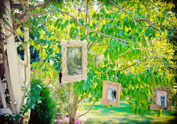 Hanging Wedding Picture Frames of loved one's wedding days...they called it their family tree