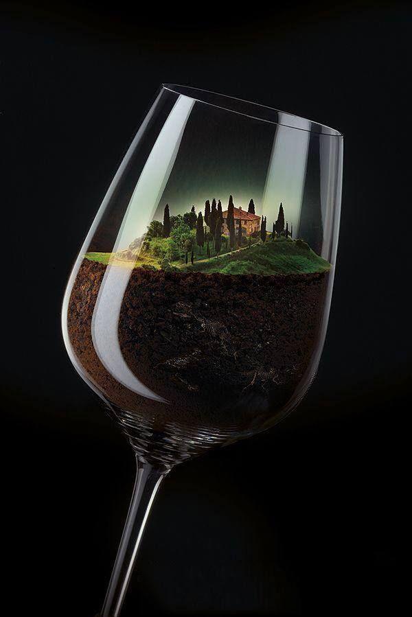 dalla terra al bicchiere il miglior vino è quello del piccolo produttore che ci mette il cuore i love vino