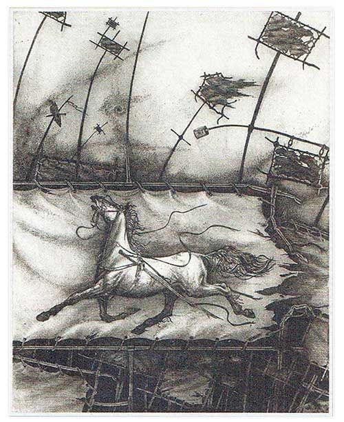 Игорь Валерьевич Тонконогий родился в 1958 году в городе Стерлитамаке. Специальное образование получил на художественно - графическом факультете Башкирского государственного педагогического института (1975 — 1980). Живет и работает в Уфе.