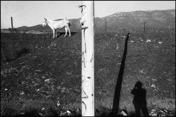 Greece, Preveza. 1994. ©Nikos Economopoulos-Magnum