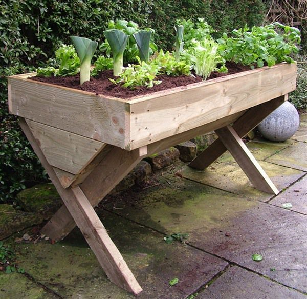 raised vegetable beds - Google Search