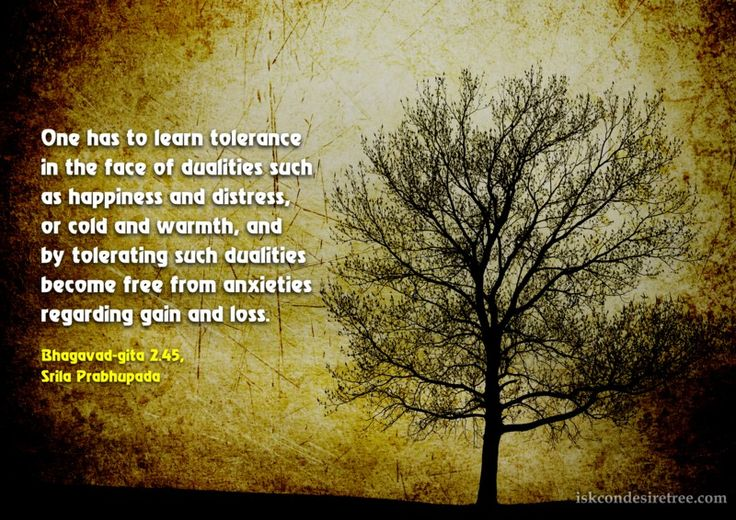 Srila Prabhupada on Learning Tolerance