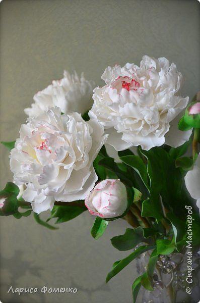 Белые пионы из холодного фарфора. Фоменко Лариса.