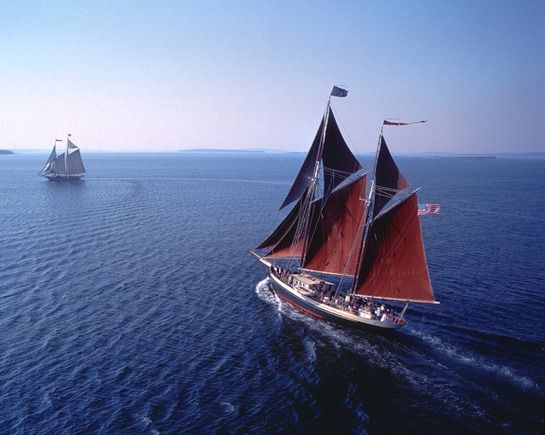 Windjammer Angelique sailing from Camden, Maine is looking for a cook with a sense of adventure
