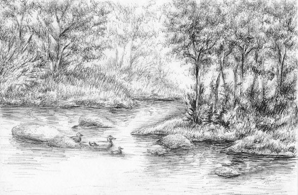 In The Forest By Sipporah Art And Illustration Landscape Drawings Illustration Art Sale Artwork