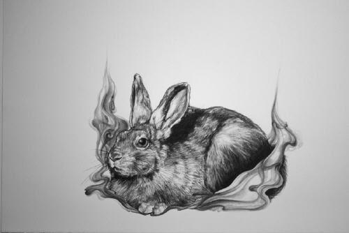 Artist: Theresa Sapergia, Title: Untitled (Rabbit)