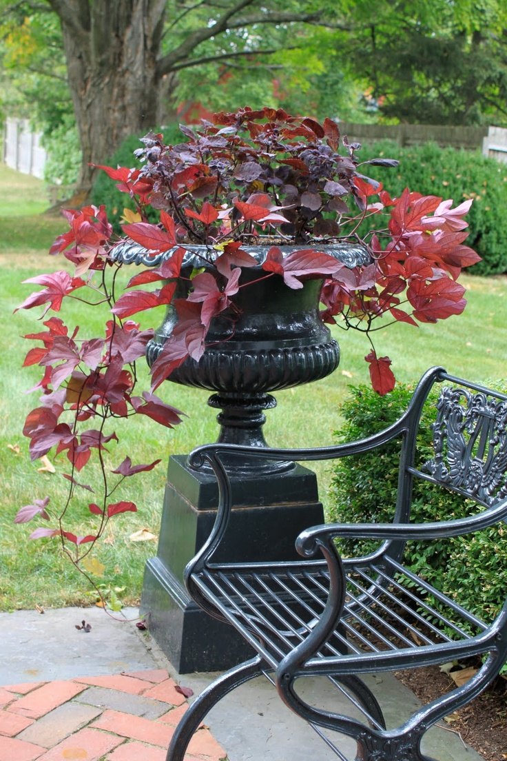 Love This Garden Urn Bench!