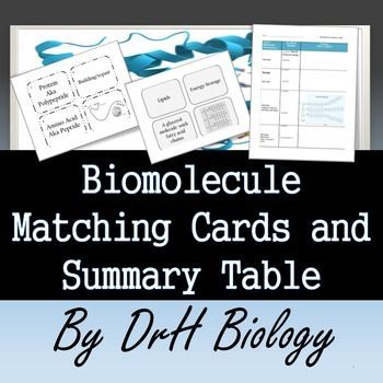 Biomolecule Matching Cards (2 versions) and Summary Chart | Pinterest