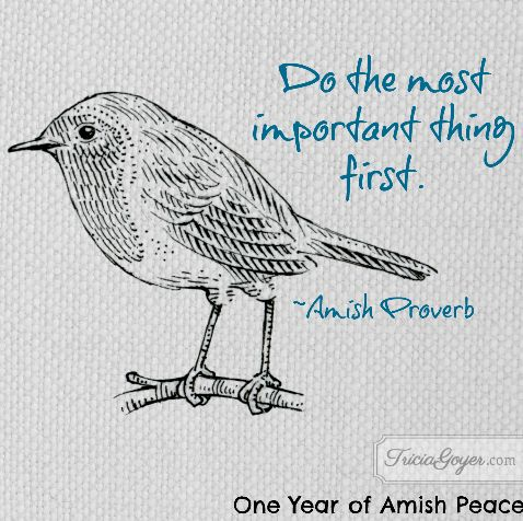 Do the most important thing first. ~Amish Proverb