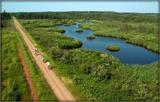 #Summer #cycling on #PEI #ConfederationTrail Via http://www.tourismpei.com/pei-confederation-trail#