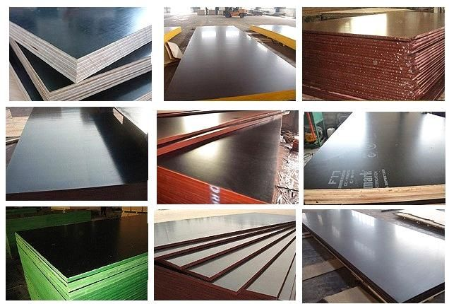 Film Faced Plywood / Shuttering Plywood / Formwork Plywood - China film faced plywood