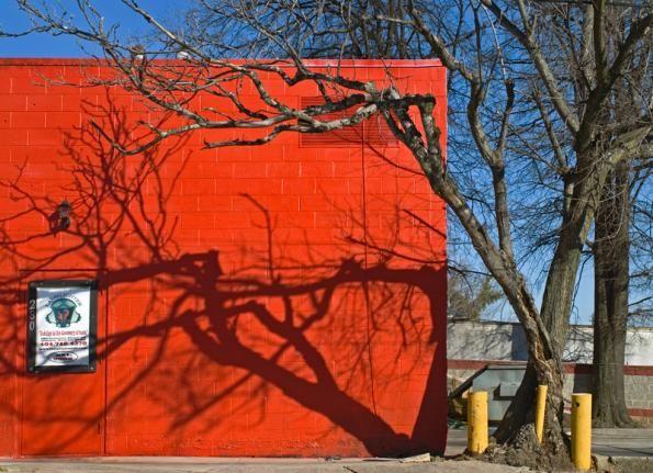 CHIP SIMONE - Redwall Tree Shadow, Atlanta, 2009