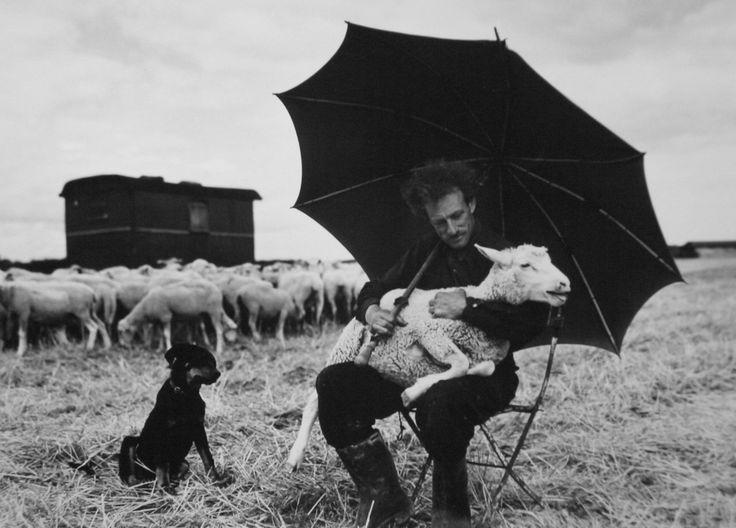 Sabine Weiss, Herdsman, 1954.