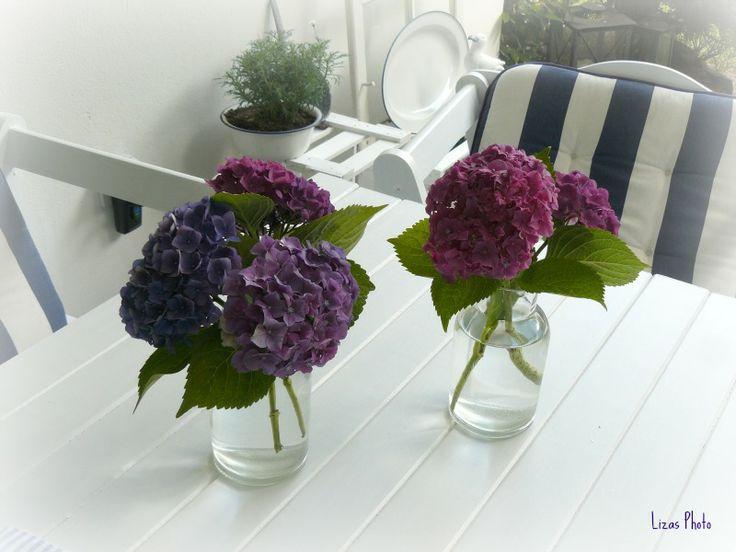 hortensien auf wei em tisch lizas wei e deko ideen pinterest. Black Bedroom Furniture Sets. Home Design Ideas