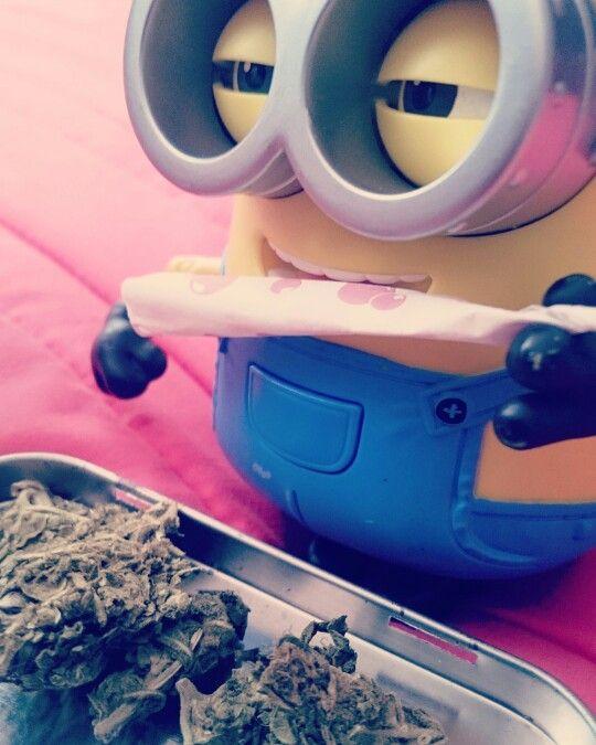 #marihuana