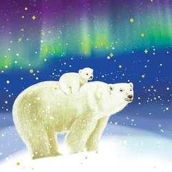 Картинки по запросу большая медведица северное сияние