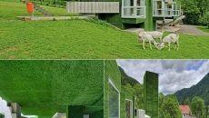 Rumput Sintetis Taman Modern » Gambar 8