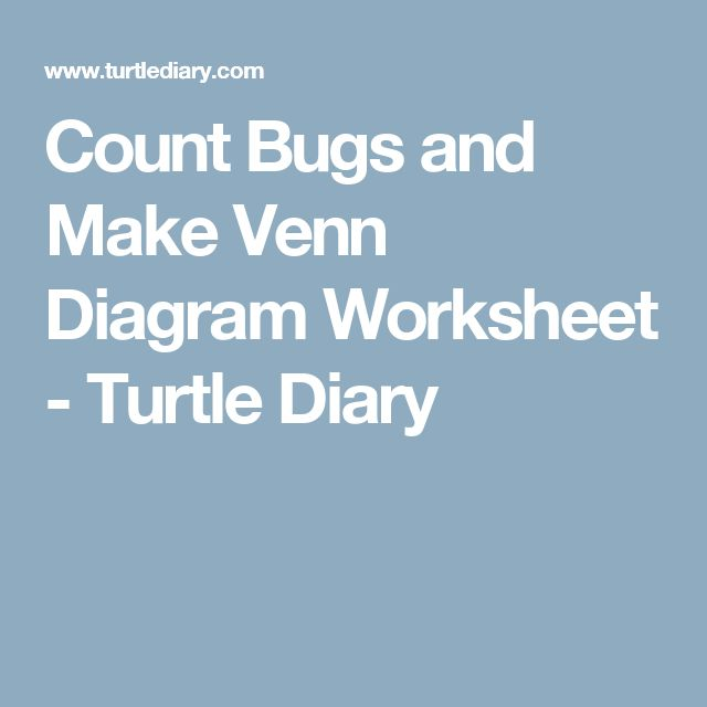 Count Bugs and Make Venn Diagram Worksheet  - Turtle Diary