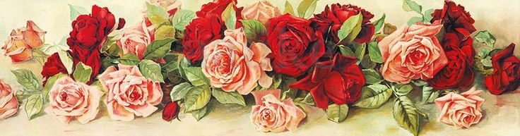 Roses - Long - Stretched Canvas