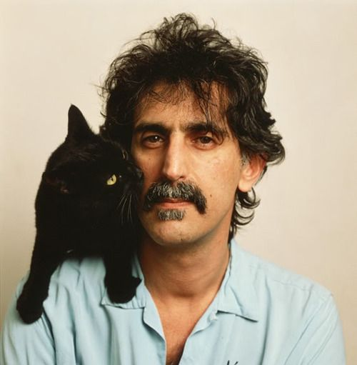 All Tomorrow's Parties — Musicians and their cats
