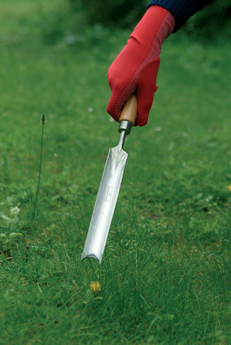 Voor het verwijderen van penwortels in zware kleigrond. Met V-vormige uitsnede om de wortel in te vangen.