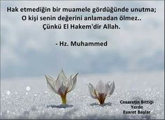 #ElHakem #Allah #Efendimiz #HzMuhammed #sav #sözler